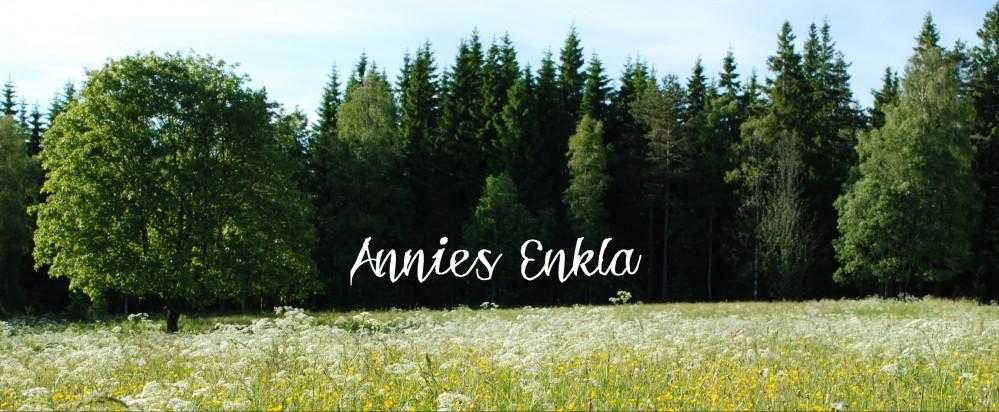 Annies Enkla